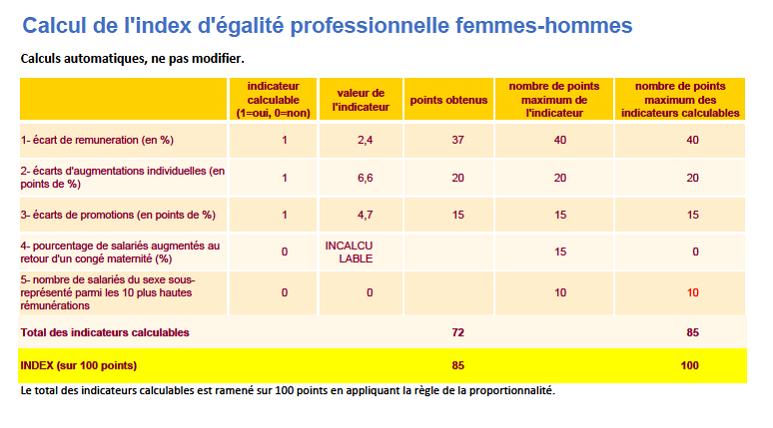Calcul de l'index d'égalité professionnelle femmes-hommes